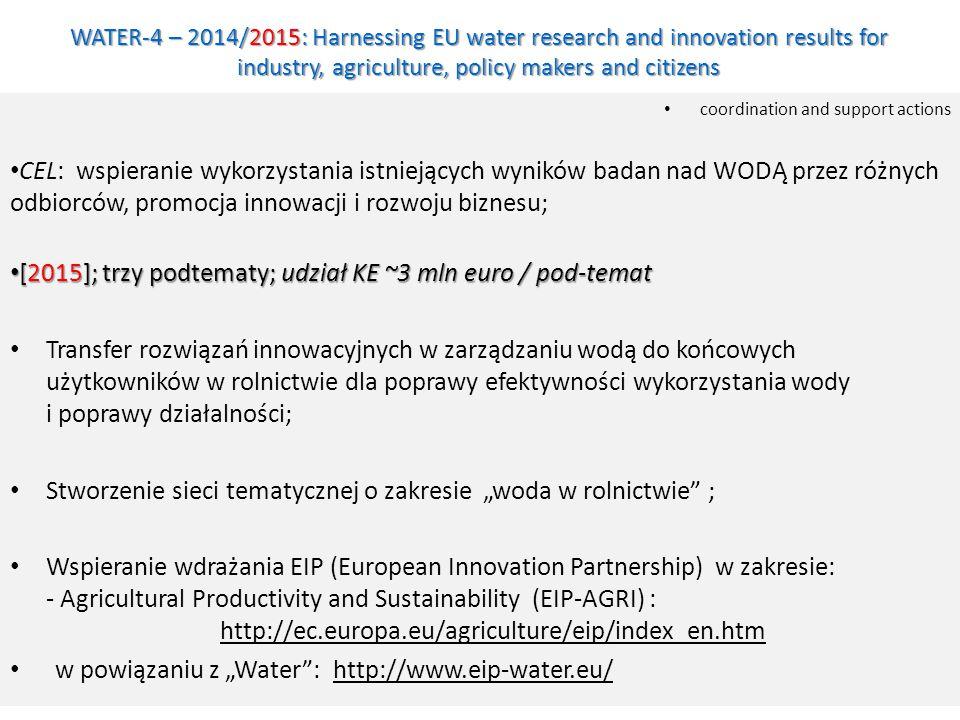 [2015]; trzy podtematy; udział KE ~3 mln euro / pod-temat